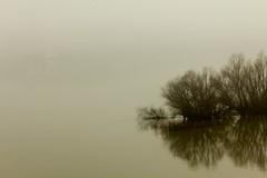 Morning river (xBRKAx) Tags: serbia danube winter morning fog mist river