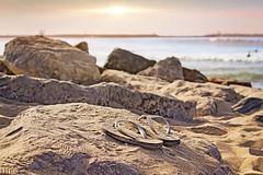 Gone Surfin (Naturali Images) Tags: flipflops surf surfing rocks ocean beach sun peaceful slippahs slippers