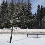 Harz-Oderbrueck_e-m10_1012063879 thumbnail