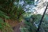 Forests Below Manaslu (Kelsie DiPerna) Tags: manaslu circuit manaslucircuit tsumvalley nepal trekking himalayas outdoors frozen landscape snow mountain mountains highaltitude extreme hiking