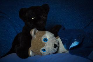 Xocki Takes Care Of Wolfi Wolf