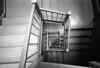stairwell NYC (triebensee) Tags: koaktrix400 kodakhc110 dilutionh 163 epsonv700 selfdeveloped film nikon f2 nikkor 28mm f28 ais brooklyn