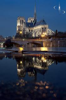 Notre Dame | Paris