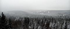 Winterlandschaft Harz (Henning Supertramp) Tags: harz deutschland ostdeutschland germany sachsenanhalt
