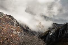 Strogness Fog (Horror_Paradise) Tags: mountain fog mist wild alone sky cold nature naturelovers landscape sicily