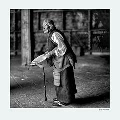 Believers002 (siggi.martin) Tags: tibet tibeter tibetans asien asia tradition menschen people frau woman frauen women kloster monastery lhasa jokhang dschokhang tempel temple buddhismus buddhism pilger pilgrims glaube belief tibetisch tibetan schwarzweis blackwhite portrait portraits portraitphotograph portraitphotographs gesicht gesichter face faces charakter character alt old gesichtsausdruck facialexpression ehrfürchtig respectful