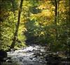 2013-09_D70_1945_20171204 (Réal Filion) Tags: québec canada rivière beauport eau rocher arbre forêt automne environnement river water autumn fall rock tree forest environment quebec