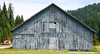 Old Barn (maytag97) Tags: maytag97 nikon d750 barn building shed storage rural old worn rustic faded gray grey paint lines line pattern board boards neglected forgotten abandoned