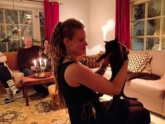 #kissanvääntäjä #moilanelkyt