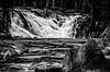DSC_4347-Edit.jpg (sjminer49) Tags: grandtetonnationalpark yellowstonenationalpark