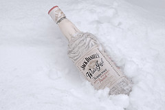Winter Jack in the Snow (Stephanie_Johnstone) Tags: jack daniels alcohol winter snow white cold storm drink frozen ice