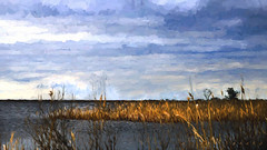 March, on The Bay_5595 (zoom out till -- more off than on) Tags: beach grass bay li ny abstract painting