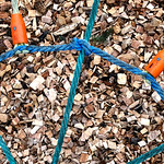 at the playground thumbnail
