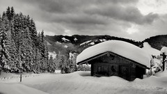 Snow roof (DrQ_Emilian) Tags: lanscape view mountains snow winter white cold trees cabin alps outdoors nature season sky clouds light details blackwhite monochrome travel austria salzburgerland mühlbach hochkönig rural countryside roof deep explore
