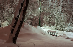 After snowfall (mrimidalv) Tags: pentax 70mm limited