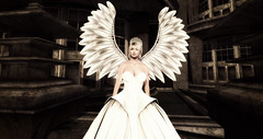 LOTD 84: Crown (gifts & new releases) (ღ ♠ Aegir ♠ ღ) Tags: secondlife sl blog blogger fashion hair catwa belleza makeup jewelry wings mina slackgirl fameshed avaway gizseom alaskametro izzie chapterfour gacha stupid cupid hunt princess queen fairy gown dress white silver angel mystical fantasy jewel pearl sanne pax diadem crown feathers posh beguiled kakapo glaze glare luxe diamond gold necklace earrings glimmer glitter sale new release event