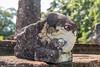 J3. Polonnaruwa - Lata Mandapa (Darth Jipsu) Tags: carving sacred cholas landmark latha srilanka mandapaya lotus pillar shrine unesco elephant polonnaruwa nissankalathamandapaya ceylon historic ceylan nissankamalla ruins column statue nissanka architecture northcentralprovince lk