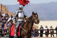 D72_5711 (shashin_alex) Tags: nikon d7200 arizona renaissance renaissancefestival