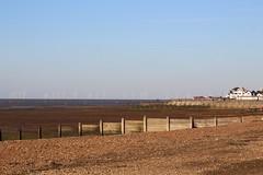 IMG_7039 (cindyincidentally) Tags: whitstable kent kentcoast britishbeach seaside seashore seasidetown