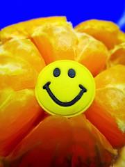Happy Satsuma (seanwalsh4) Tags: macromondays citrus happy smile smiley macro mondays lovepeace happysatsuma seedless easypeeling canon ixus190 healthy orange oneofyourfiveaday fun humour love laugh joke