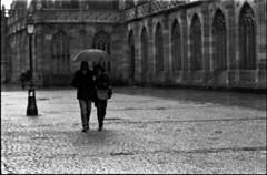 Mélancolie, ma bien-aimée (Rachelnazou) Tags: caffenol blackwhite minolta film ilford analog argentique