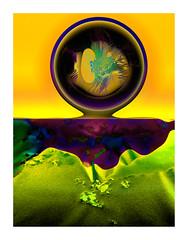 Imaginary landscape maart 2018 (cees van gastel) Tags: ceesvangastel canoneos550d canon1855mm imaginarylandscape fantasy creative creatief fantasie denkbeeldig edited bewerkt macro cirkel circle