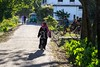 7D9_1139-2 (bandashing) Tags: village road path hijab woman walk rickshaw sunshine green lush afternoon sylhet manchester england bangladesh bandashing aoa socialdocumentary akhtarowaisahmed