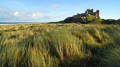 The grass castle (WISEBUYS21) Tags: bamburgh castle dunes beach grass blue sky sea wisebuys21 northumberland rule thirds coastal coast seascape