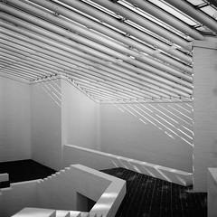 Sculpture Building (colinpoe) Tags: lines blackandwhite rolleiflex mediumformat 6x6 stairs shadows rolleiflexautomat glasshouse tlr rolleiflexautomatk4a skylight sculpturebuilding bw ultrafine100 philipjohnson 120