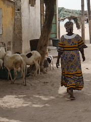 SenegalFromDeltaSaloumToMbour016 (tjabeljan) Tags: mbour moskee mosque termite termiet boabab senghor senegal africa afrika