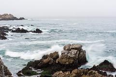 2018-Jan-California-1069 (4x4Foto) Tags: 2018 bigsur california deetjensrestaurant emeraldbay january montereybay pacificcoasthighway pacificgrove pacificocean southlaketahoe flowers ocean plants rocks sunset sunshine surf surfing travel trees waves virginia unitedstates