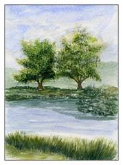 Au bord de la rivière (ybipbip) Tags: aquarelle aquarell akvarell watercolor watercolour paint painting pintura paysage landscape