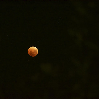 Red Blue Moon