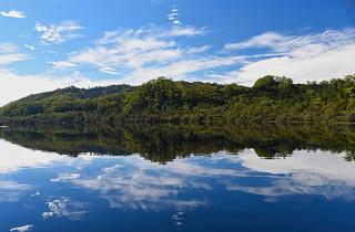 Gordon River refections