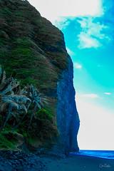 Hawaii-WaipioValley-17.jpg (Chris Finch Photography) Tags: jungle hawaiiphotography waipio taro waipiovalley hawaii landscapephotographs landscapephotography photographs chrisfinch wwwchrisfinchphotographycom chrisfinchphotography utahphotographer tarofarms bigisland tarofarm tropical valley