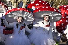 DSC8040 (Starcadet) Tags: dieburg dibborsch fastnacht dibojerfastnacht karneval prty brauchtum parade umzug fastnachtszug fastnachtdienstag fasching fasnet kostüme verkleiden südhessen cosplay spas humor clowns