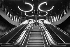 Nostromo (Ren-s) Tags: bnw blackandwhite black white blackwhite noiretblanc noir noirblanc blanc stairs escaliers escalator mecanic mécanique gare station bruxelles brussels europe belgique belgium architecture light circle cercle metal métal lumière