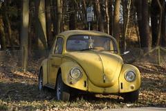 Volkswagen Beetle (marcelwijers) Tags: volkswagen beetle kever vw car auto diervoort overasselt gelderland nederland netherlands niederlande pkw pays bas