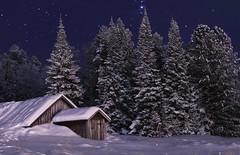 Winter dream in Lapland (Henni Klee) Tags: winter stars sky night lapland finland snow christmas wintertraum sternenhimmel starrynight schnee north