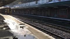 Gadael Amwythig / Leaving Shrewsbury (Rhisiart Hincks) Tags: fideo video bhideo gorsaf stáisiún geltoki tihenthouarn tigar gare estacion station stèisean porzhhouarn rheilffordd henthouarn hynshorn trenbide iarnród burdinbide chemindefer railway rathadiarainn eisenbahn ferrocarril ferrovia geležinkelis 铁路 鉄道 caleferată amwythig shrewsbury salop shropshire 柴油机 diesel dîsl trên traein train tren trena trèan