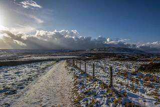 Snowy Lane....