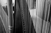 """Harp Strings"" (Photography by Sharon Farrell) Tags: harp harpstrings lyonhealey princetonuniversity princeton princetonuniversitycampus princetonnewjersey princetonnj blackandwhite blackwhite noiretblanc monochrome"