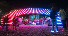 Back to the Future (Derek Coull) Tags: spectra 2018 aberdeen unionterracegardens lightbattle festivaloflight february darknights hitech ledlights bluelightshoes venividimultiplex