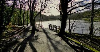 Winter sunlight, Yarrow Valley Park, Chorley, Lancashire, UK