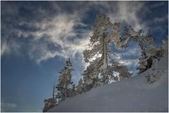 Larra-Belagua016 (Fermin Ezcurdia) Tags: larra belagua navarra pirineo nieve pyrenees esquinordico arlasarette anie