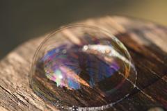 seifenblase (mwo_w_GERMANY) Tags: mario wolff mwoaqwode seifenblase bubble reflection reflexion reflektion licht light