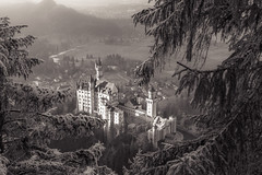 The Castle behind the Forest (redfurwolf) Tags: castle neuschwanstein fairytale landscape bavaria germany hohenschwangau outdoor nature building architecture trees mountain valley snow redfurwolf sony a7riii sel2470f28gm