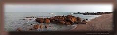Manche, Cosqueville, Vicq-sur-Mer (La Plage du Vicq) (chatka2004) Tags: france normandie cosqueville laplageduvicq vicq