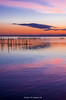 IMGP0066 (carlosmiguellatorre) Tags: 2018 albufera atardecer horaazul mar