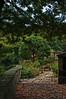 IMGP537 (douglasjarvis995) Tags: shibdenhall seat k3 1770lens pentax flowers hdr halifax garden flower plants wall
